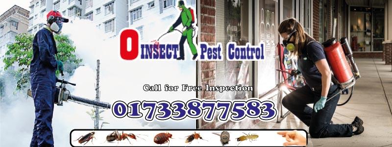Pest Control Zero Insect